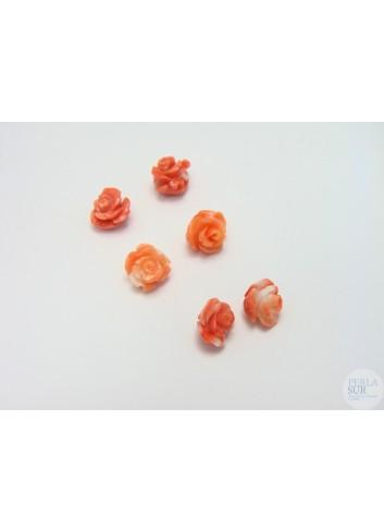 Rosa 5 a 7mm Coral Japonés