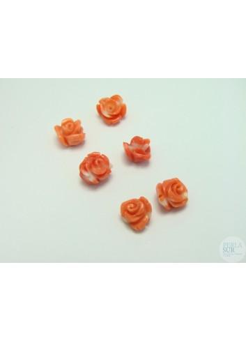 Rosa 7 a 9mm Coral Japonés